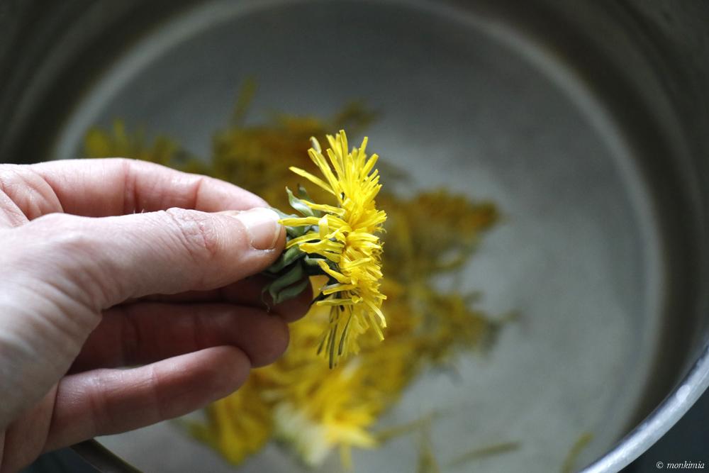 Löwenzahnblüte Verwendung